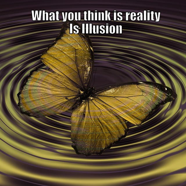 Reality vs Illusion