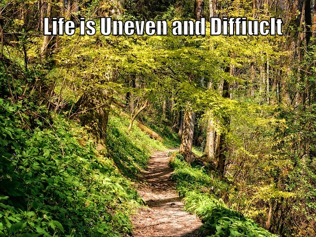 The Road in Life is Difficult